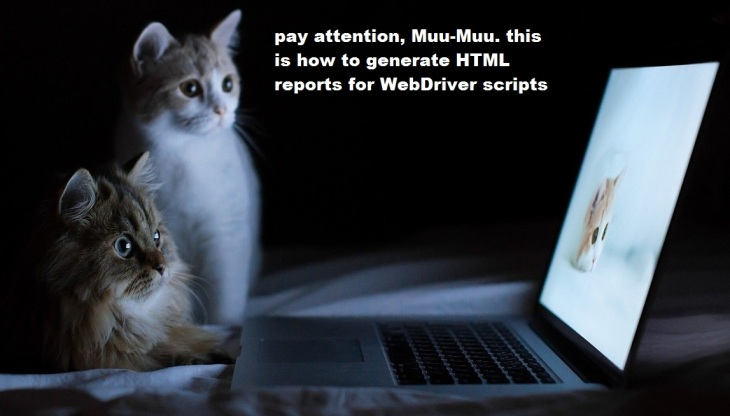 cats and html reports